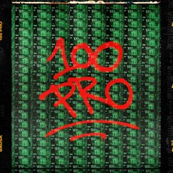 100 Pro - Bausa