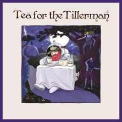 Tea For The Tillerman 2 - Yusuf