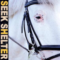 Seek Shelter - Iceage