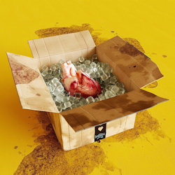 Emotions - Lumpenpack